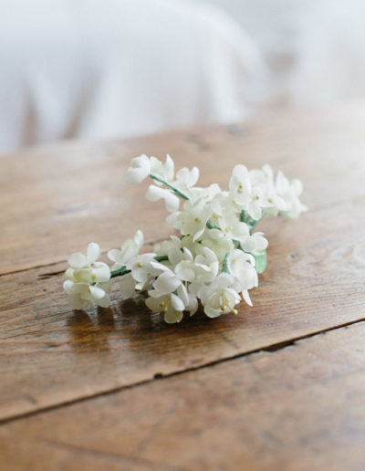 Ramillete de pequeñas flores blancas.